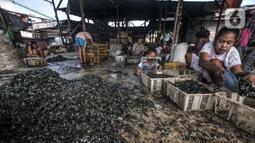 Aktivitas pekerja saat mengupas kerang hijau di Kalibaru, Cilincing, Jakarta Utara, Minggu (13/6/2021). Tiap rumah pengolahan kerang (mandor), terdapat 5 hingga 20 pengupas. (merdeka.com/Iqbal S. Nugroho)