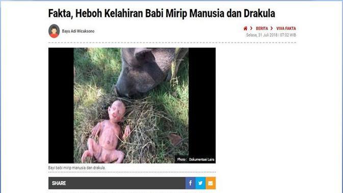 [Cek Fakta] Viral Foto Bayi Manusia Mirip Babi, Hoaks Atau Fakta?