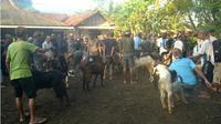 Pada tahun Za, Lebaran Idul Adha, atau disebut 'Bada Perlon' oleh Komunitas Bonokeling, tiba di Kamis Pahing. (Liputan6.com/Muhamad Ridlo).