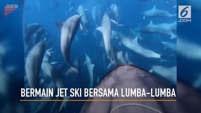 Seorang Pria merekam aksinya bermain jet ski bersama puluhan lumba0lumba di perairan Kosta Rika.