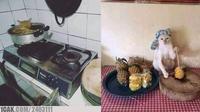 6 Kelakuan Kucing saat di Dapur Ini Bikin Geleng Kepala (sumber: 1cak.com dan FB Chirs Shorty)