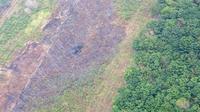 Pola karhutla yang mana lahan sengaja dibakar di Banjarmasin pada 20 September 2019. (Dok Badan Nasional Penanggulangan Bencana/BNPB)