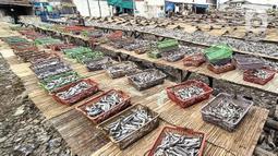 Aktivitas nelayan saat menjemur ikan asin di Muara Angke, Jakarta, Minggu (8/11/2020). Pandemi Covid-19 dan masuknya musim penghujan di Jakarta menyebabkan permintaan sekaligus produksi ikan asin di Muara Angke merosot hingga 50 persen. (merdeka.com/Iqbal Septian Nugroho)