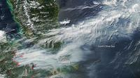 Pergerakan kabut asap dari Sumatra ke Malaysia selatan dan Singapura pada 19 Juni 2013 (NASA)