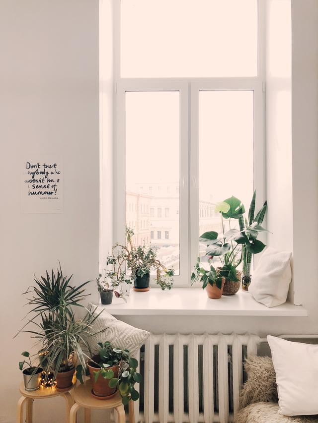 ilustrasi tips kamar yang estetis/pexels