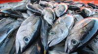 Sebanyak 11.000 ton tuna sirip kuning dan cakalang telah memiliki sertifikasi untuk pasar Amerika dan Eropa. Dok KKP