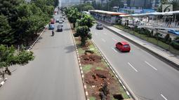 Pohon-pohon terdampak penataan ulang trotoar  di kawasan Sudirman, Jakarta, Jumat (9/3). Pemprov DKI Jakarta yang merelokasi pohon-pohon ini, sudah melakukan langkah tersebut terhadap 110 pohon hingga kini. (Liputan6.com/Arya Manggala)