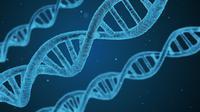 Ilustrasi gen (sumber: Pixabay)