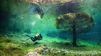 Keindahan Bawah Air Green Lake (sumber: bliubliu)