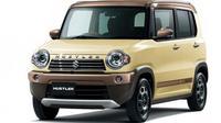Suzuki Hustle Wanderer Special Edition. (ist)