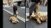 Bon-chan berjalan-jalan bersama ayahnya (foto: twitter)