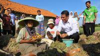 Program pembangunan khususnya di pedesaan menjadi perhatian khusus yang terus dikembangan Kementerian Pertanian