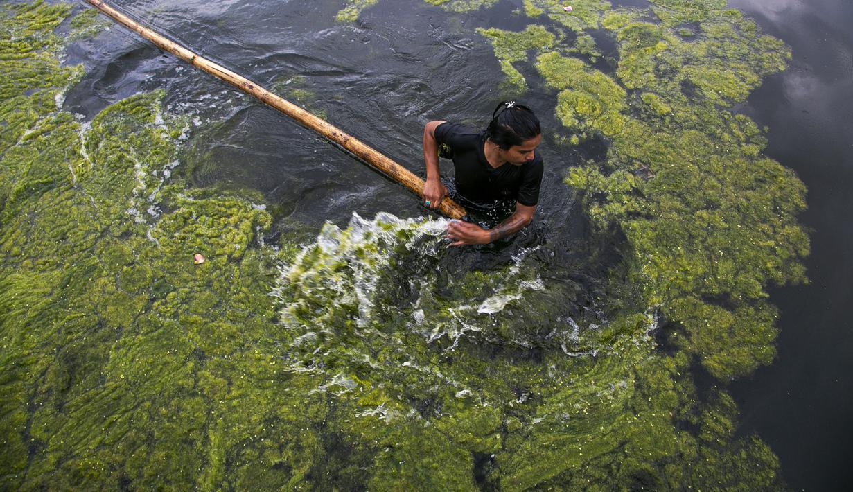 Seorang pekerja membersihkan ganggang di kolam Kamal Pokhari di Kathmandu, Nepal, Selasa (27/7/2021). Kolam Kamal Pokhari merupakan salah satu kolam tertua dan bersejarah yang sedang menjalani restorasi. (AP Photo/Niranjan Shrestha)