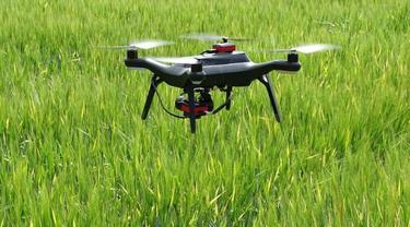 foto ilustrasi penggunaan drone untuk pertanian gandum barley di Inggris - AP