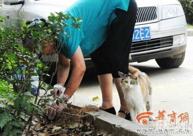 Seorang wanita baik menguburkan anak kucing yang telah mati   Photo: Copyright stomp.com.sg