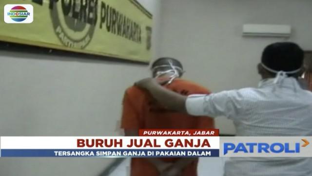 Buruh pria warga Jatiluhur, Purwakarta, dibekuk polisi saat sedang menunggu pembeli ganja.