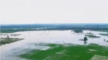 Banjir di Mojokerto mengganggu kegiatan belajar mengajar hingga banjir di Aceh Timur masih setinggi 50-80 centimeter.