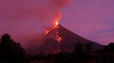 Lava cair mengalir menuruni lereng gunung berapi Mayon saat meletus di Kota Legazpi, Provinsi Albay, tenggara Manila, Filipina, Selasa (30/1). Air mancur lahar Mayon telah mengalir hingga tiga kilometer (1,86 mil). (AP Photo/Bogie Calupitan)
