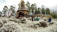 Festival Pesona Edelweis dijadikan daya tarik untuk memulihkan kepercayaan wisatawan mancanegara pasca-erupsi Gunung Agung beberapa waktu silam.
