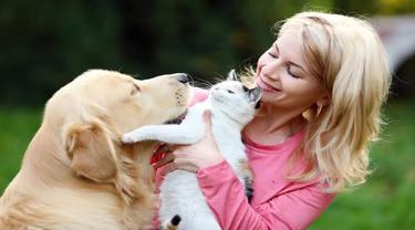 Pemilik Anjing dan Kucing