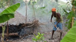 Jhonny Admeis saat membuat arang dari pohon buah-buahan Hurricane Matius di pinggiran Les Cayes, Haiti, (23/1). Peraturan tersebut untuk melindungi zona pemotongan kayu. (AP/David McFadden)