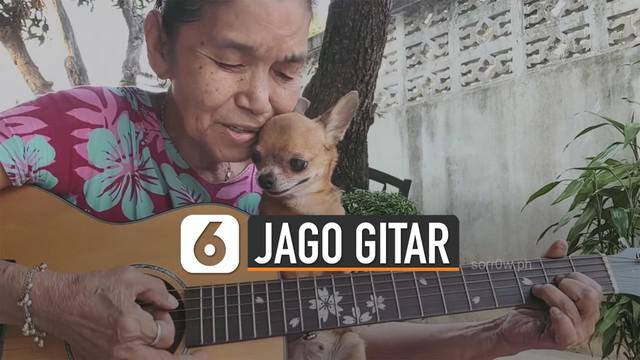 Merdunya suara nenek 70 tahun ini kala bernyanyi sambil memangku anjing chihuahua.
