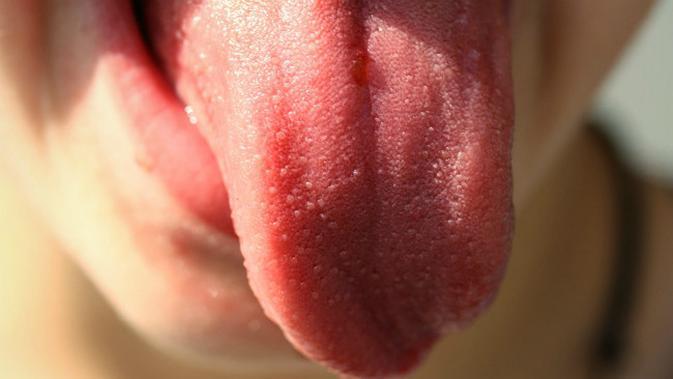 Ilustrasi lidah manusia. (Sumber Pixabay/1045373)