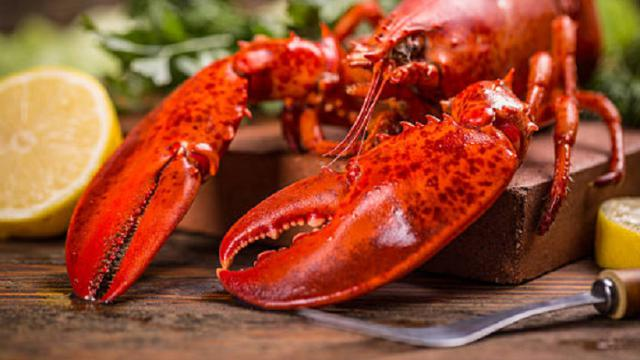 Meraup Untung Dari Bisnis Lobster Air Tawar Di Sidoarjo Surabaya Liputan6 Com