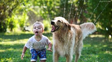4 Alasan Anjing adalah Peliharaan yang Baik
