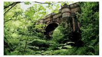 Jembatan Overtoun (sumber: dailymail)