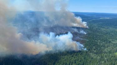 Kebakaran Hutan di Distrik Regional Thompson-Nicola