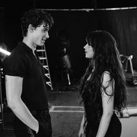 Camila Cabello - Shawn Mendes (Instagram/ camila_cabello)