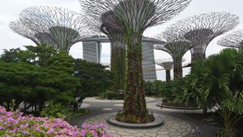 Jurus Singapura Genjot Perusahaan Rintisan IPO di SGX