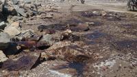 Tumpahan minyak Pertamina di Karawang (Liputan6/Abramena)