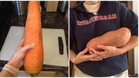 Buah dan sayur tak biasa (Sumber: Boredpanda)
