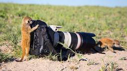 Bro, jangan di depan kamera. Gak kelihatan nih!(freeplaneta-news.ru)