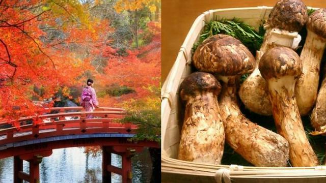 Mencicipi Kelezatan 4 Kuliner Khas Musim Gugur Di Jepang Citizen6 Liputan6 Com