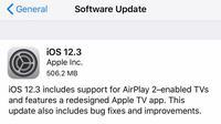 Apple menggulirkan update untuk iOS 12, yakni versi iOS 12.3 (Forbes)