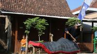 Tradisi menjemur kasur jelang Idul Adha (Liputan6.com/ Dian Kurniawan)