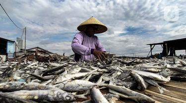 FOTO: Nelayan Ikan Asin Terdampak Pandemi dan Musim Penghujan