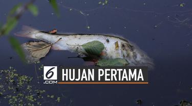 Setelah kemarau panjang, beberapa daerah di Indonesia mulai hujan. Namun ternyata hujan pertama setelah kemarau panjang bisa berdampak buruk.