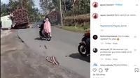 Dilansir akun Instagram @agoez_bandz4, Minggu (6/9/2020), terlihat sebuah truk mengalami kecelakaan karena beban yang dibawa terlalu berat.