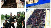 Upaya penyelundupan 1.650 induk kepiting di perairan Pulau Sebatik yang berbatasan langsung dengan Malaysia, digagalkan. (Liputan6.com/Dian Kurniawan)