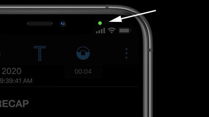 Muncul titik hijau di layar iPhone setelah update ke iOS 14. (Doc: Petapixel)