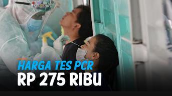 VIDEO: Catat! Harga Tes PCR Covid-19 Jawa-Bali Turun Jadi Rp 275 Ribu