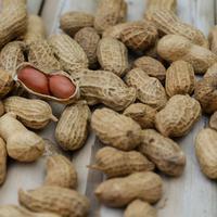 kacang tanah/copyright: pexels.com/shatta pilabut