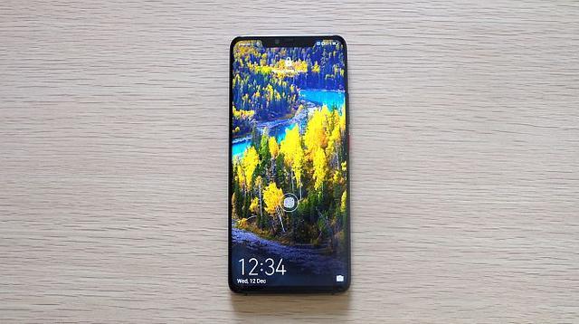Huawei Mate 20 Pro (Andina Librianty/Liputan6.com)