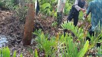 Anggota TNI dan Polres Kutim amankan rudal yang ditemukan warga. (Dhedy/Sangatta Post/Jawa Pos Group)