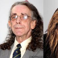 Star Wars Episode VII memasukkan salah satu nama lama, yaitu Peter Mayhew untuk kembali sebagai Chewbacca.