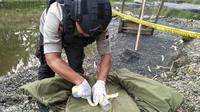 Polisi memusnahkan ranjau anti tank aktif sisa PD II yang ditemukan penambang pasir di Kebumen. (Foto: Liputan6.com/Polres Kebumen/Muhamad Ridlo)
